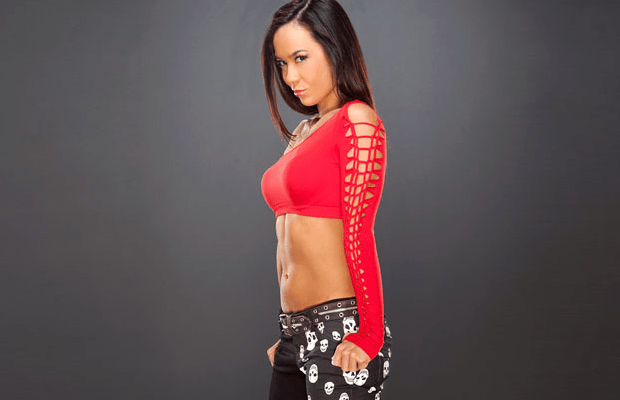 AJ Lee Talks Ending Feuds With Dolph and Kaitlyn, Her ...