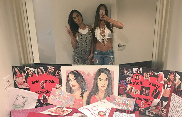 Bella-Twins-Social-Media-Catch-Up