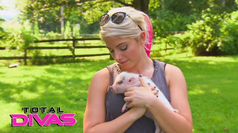 Alexa Bliss mourns the loss of her pet pig, sets up fundraiser