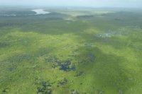 En el área donde estará hay diversos ecosistemas de humedales de la región, son una reserva de agua dulce que crea hábitats para muchas especias de flora y fauna Foto: Ministerio de Ambiente de Panamá