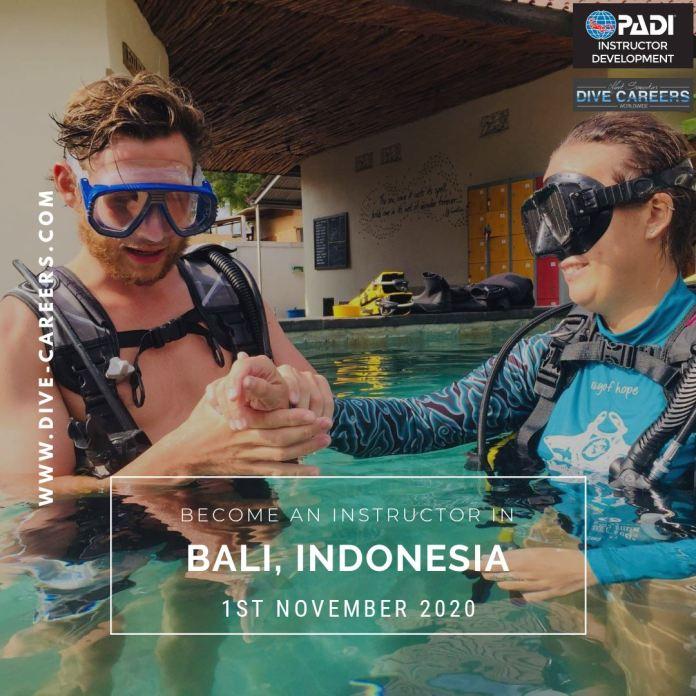 Dive Careers Worldwide Idc Amed Bali Idc Amed Bali