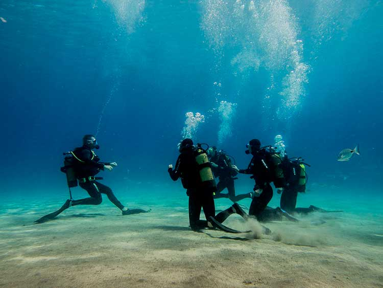 Opfrisduik, Dive College Lanzarote