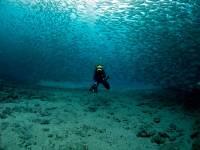 Diving course, Dive College Lanzarote