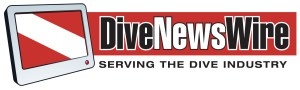 2015 DNW Logo
