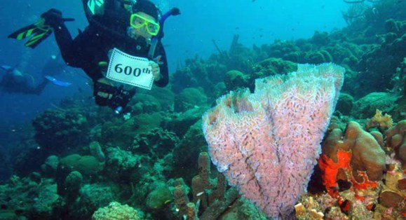 Frequent Bonaire Visitor Logs 600th Dive During Recent Island Visit