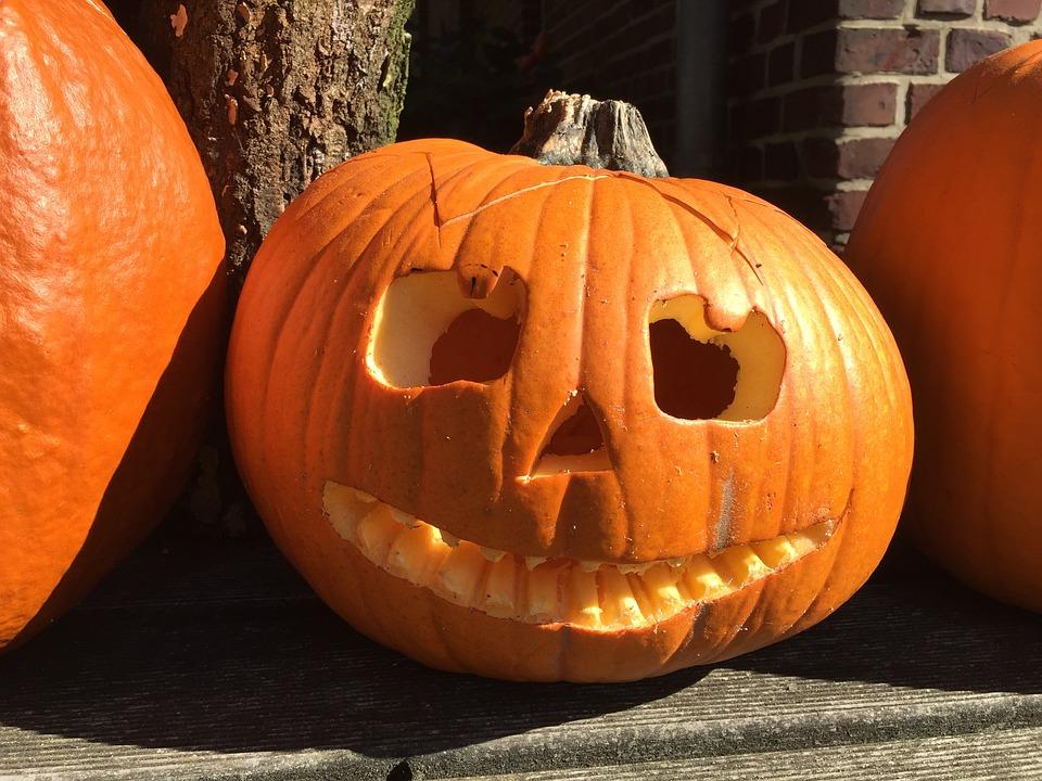 pumpkin-1423469_960_720