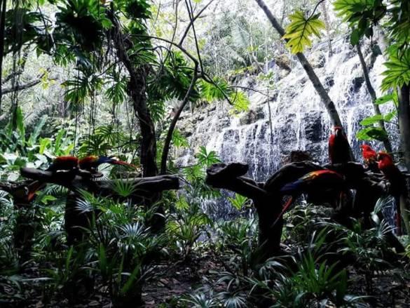 Vacanze in Messico – perché andarci?