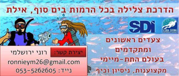 רוני ירושלמי