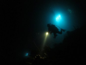 night dive 1