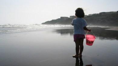 ניקוי חוף