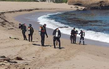 כניסה לים בחוף מונסטרי