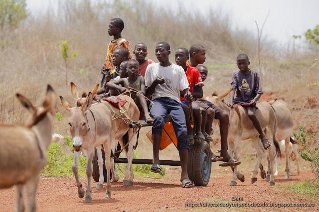 jovenes gambianos