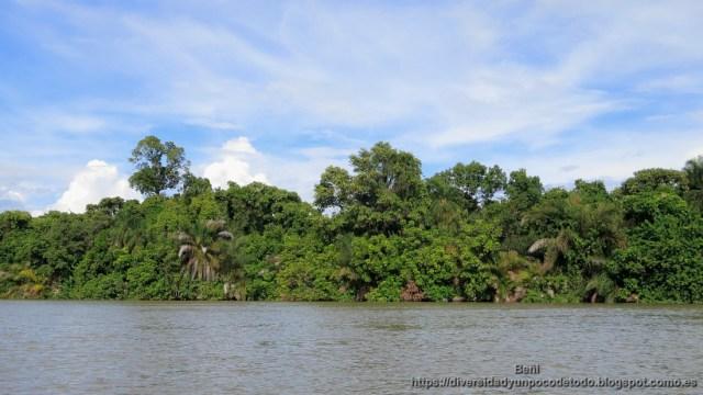 paque nacional rio gambia