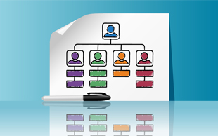 Meeting in a Box: Diversity-Department Structures