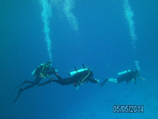 Cozumel Mexico with Diveshack USA May 2014 19