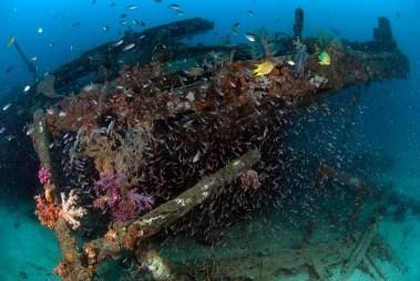 Wreck diving with B&J on Tioman Island