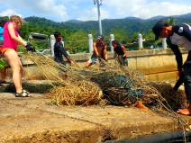 Fishing net being brought on land