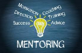 Võimalus osaleda koolitus- ja mentorlusprogrammis