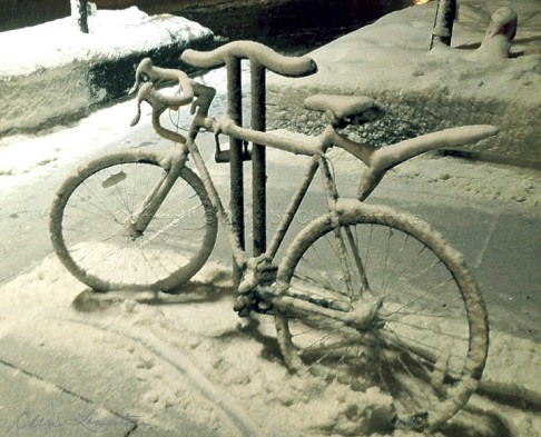 Snowbound - Chicago Blizzard - Bike