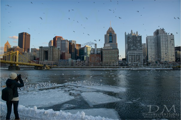 Shooting Birds On The Banks Of The Allegheny