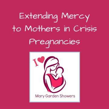 Extending Works of Mercy to Women in Crisis Pregnancies (2)