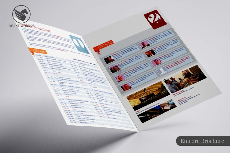 Emcore Brochure Design By Divine Works