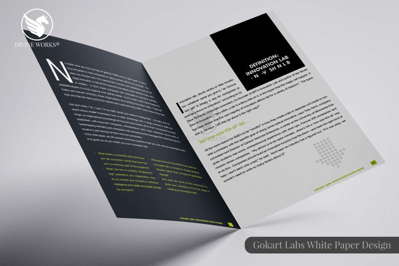 Gokart Labs White Paper Design By Divine Works