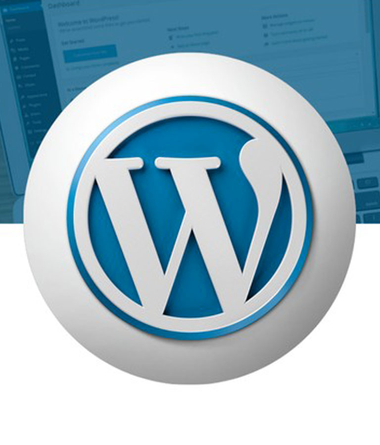 The Complete WordPress Website & SEO Training Masterclass