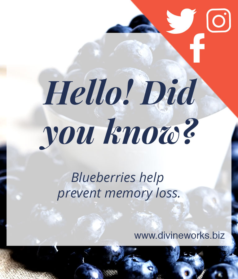 Blueberry Social Media Template