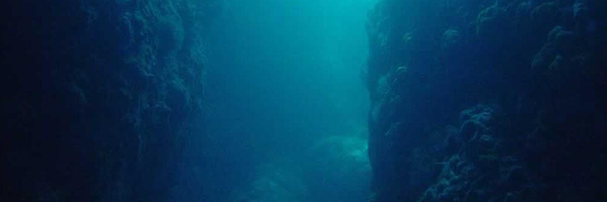 Shark Cave - Myanmar