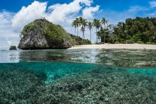 Split scene with tropical beach in Raja Ampat