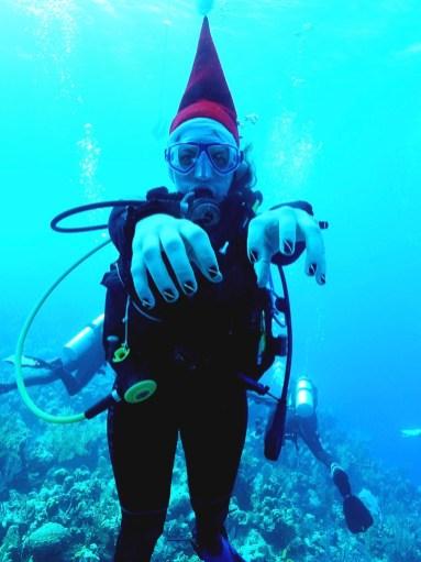 christmas_diver_bini.jpg
