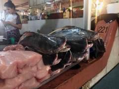 Am Freitag ist Fischtag am Markt