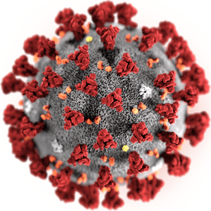 Imagen 3D del coronavirus de Wuhan 2019- NCoV