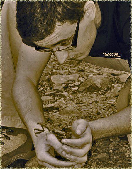 Extinción de insectos. Javier Lozano y mantis