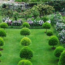 الحديقة الخارجية