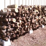 Building a homemade outdoor firewood storage rack