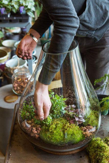 DIY Urban Indoor Garden