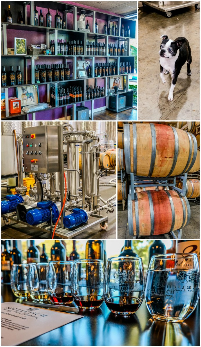 Spelletich Family Winery in Napa Valley Green Dream Bus Tours
