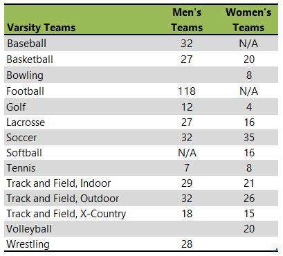 Elmhurst College athletic team listing