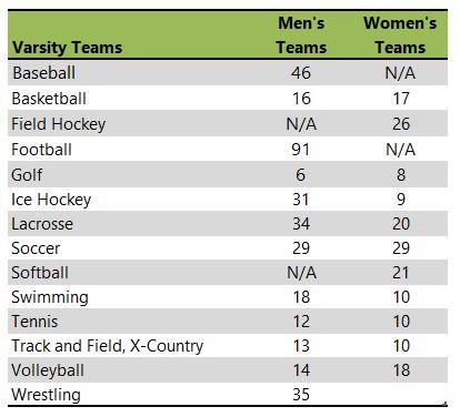 Wilkes University athletic teams listing