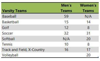 Saint Edwards University athletic teams