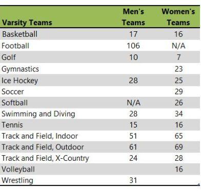 University of Wisconsin Eau Claire athletic teams