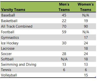 Hamline University athletic teams