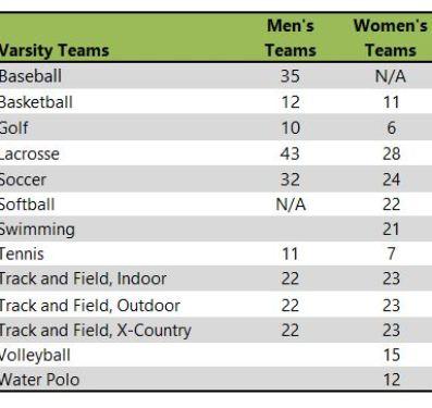 Sienca College athletic teams