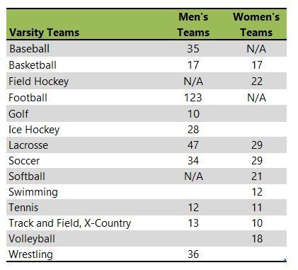 Western New England University athletic teams listing