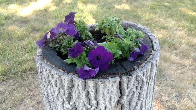 DIY-Tree-Stump Planter
