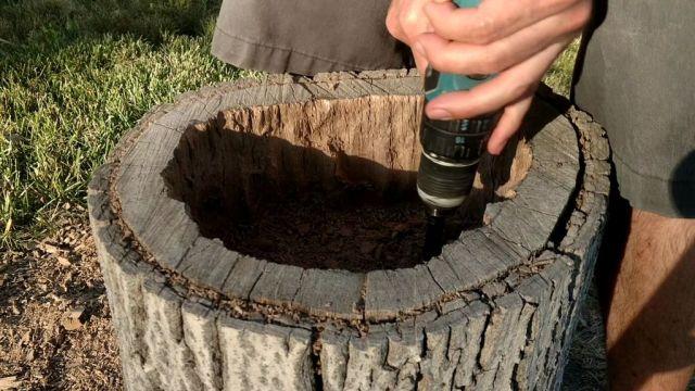 DIY Tree-Stump-Planter