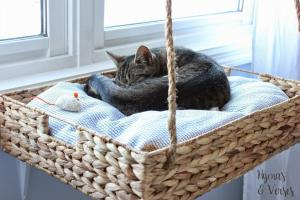 diy-hanging-window-basket-cat-bed