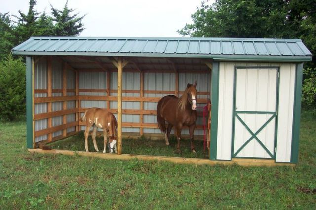 3 Sided Small Horse Shelter Ideas